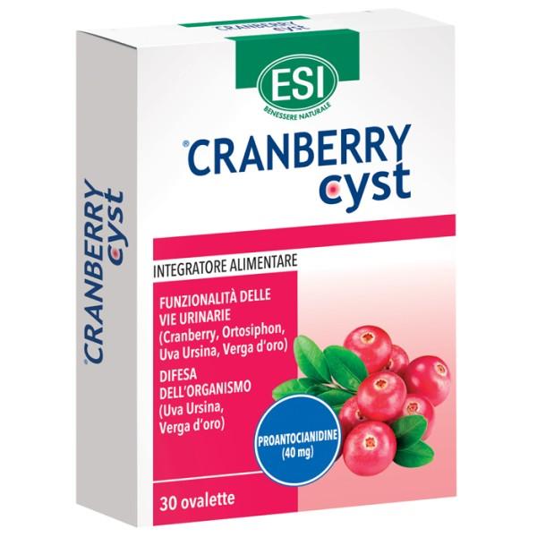 CRANBERRY CYST 30 OVALETTE ESI